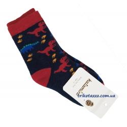 """Носки теплые зимние махровые для мальчика тм""""Katamino"""" , Dino красные"""
