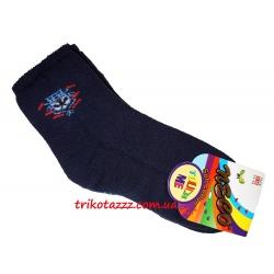 Теплые махровые носки для мальчиков синие